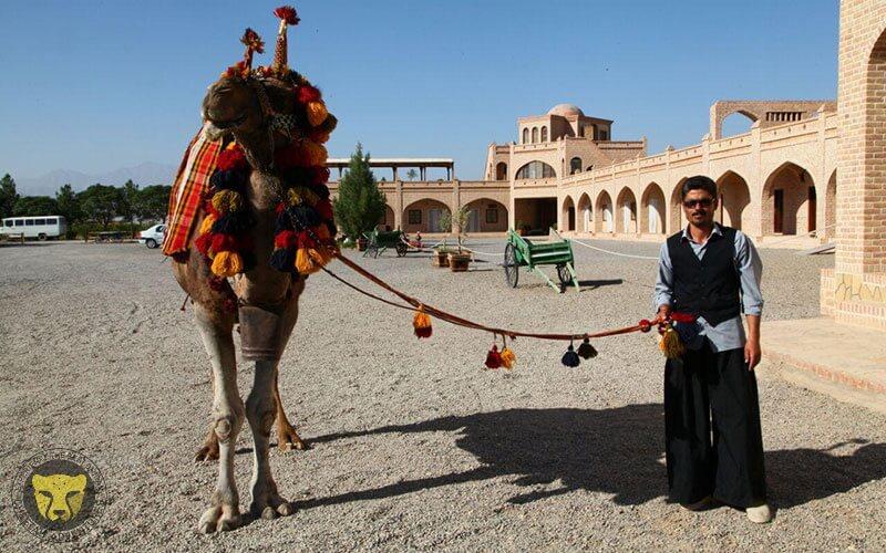 Matin abad desert camp cultural tour