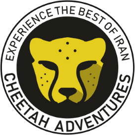 Cheetah Adventures