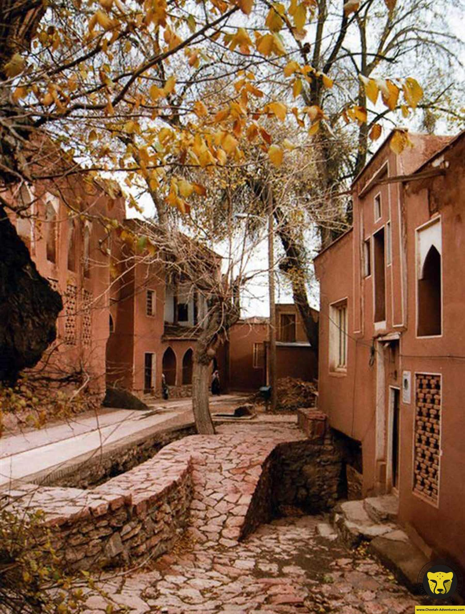 Abyaneh village iran cultural tour