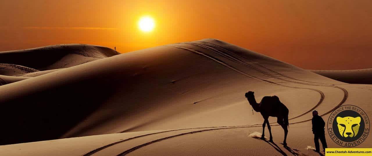 Yazd Deserts zarrin yazd kavir desert travel guide iran tour package with cheetah adventures
