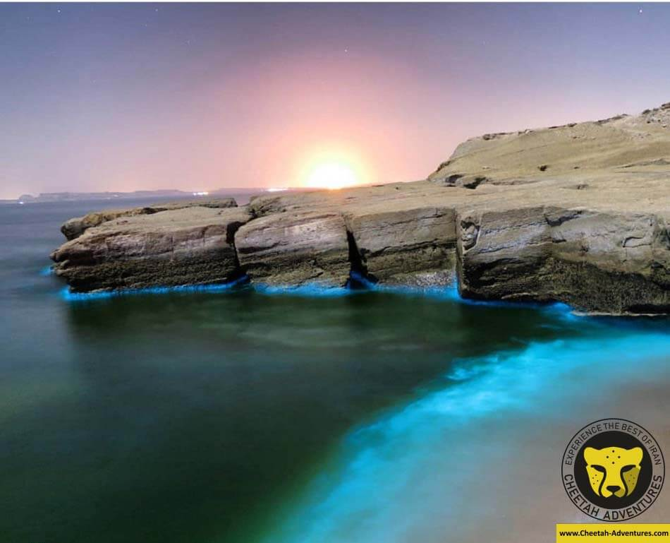 Hengam Island qeshm travel guide iran tour package