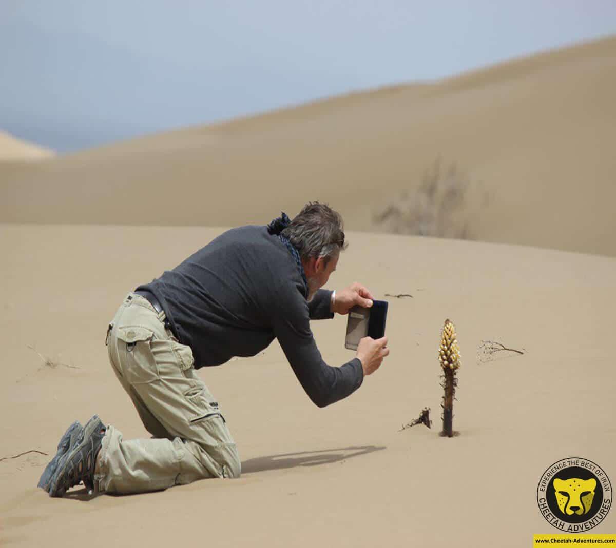 Dasht-e kavir and Dasht-e Lut Desert area of Iran, Desert Tours