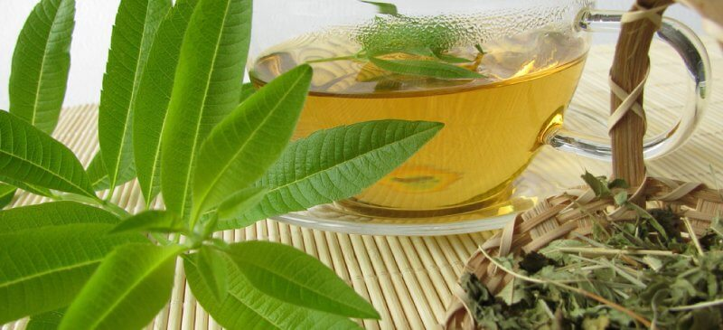 Beh Limoo (Lemon Beebrush Tea)-Iranian Beverages-Iran culture