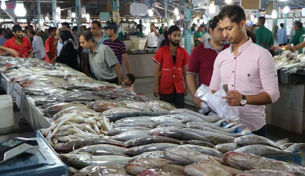 Bandar Abbas Fish market visit iran tour travel guide attractions things to do destinations Cheetah adventures