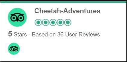 Cheetah adventures iran travel agency review reviews by tripadvisor1