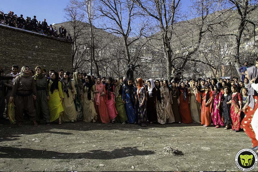 Nowruz_Cheetah_Adventure_Iran